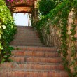Green stairs with flowers on arch and blue sly — Stock Photo