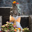 Typical Balinese statue — Stock Photo #14362579