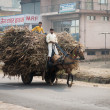 Two Indian boys ride a horse with loaded cart on a road — Stock Photo