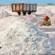 Salt collecting in salt farm  — Stock Photo