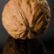 Walnut on black background — Stock Photo #18354957