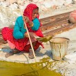 Indian woman collects algae — Stock Photo