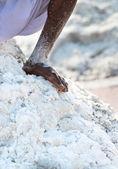 Bare worker foot salt in salt farm — Stock Photo