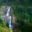 Stock Photo: Large waterfalls in green tropical forest