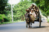 Traditional nature cargo transport, Sri Lanka — Stock Photo