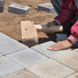 The worker paves a stone path — Stock Photo