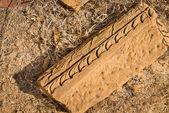Elementem architektury indyjskiej na piaskowca — Zdjęcie stockowe