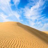 Gold dunes in great indian desert — Stock Photo