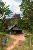 Shack in front of high rock under green forest — Stock Photo