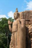 Avukana standing Buddha statue, Sri Lanka. — Stock Photo