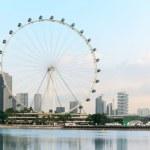 Ferris wheel - Singapore Flyer — Stock Photo #27454231