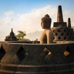 Buddha in Borobudur Temple at sunrise. Indonesia. — Stock Photo