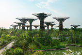 Gardens by the Bay Singapore with supertrees — Stock Photo