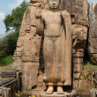 Avukana standing Buddha statue, Sri Lanka. — Stock Photo
