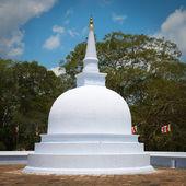 Kleine weiße stupa in anuradhapura, sri lanka — Stockfoto