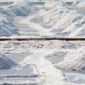 Salt piles in salt farm, India — Stock Photo