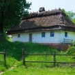 Stock Photo: Typical village house