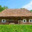 Traditional village wooden house in green country area — Stock Photo