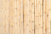 Wooden wall of bamboo close-up — Stock Photo