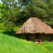 Green country authentic wooden house — Stock Photo