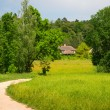 Green country area — Stock Photo