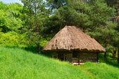 Casa de madera auténtico país verde — Foto de Stock