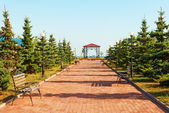 Wide path in nice light park under blue sky — Stock Photo