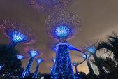 Night illumination in Gardens by the Bay, Singapore — Stock Photo