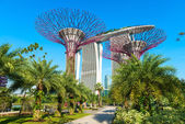 Marina bay sands and Supertrees at Gardens by the Bay. — Stock Photo