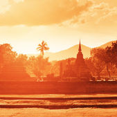 Ruïnes van grote boeddhistische tempels in tropisch bos op zonsondergang. — Stockfoto