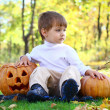 A little boy with two Helloween pumpkins — Stock Photo