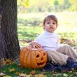 Stock Photo: Little boy with halloween pumpkin and broom sitting near tre
