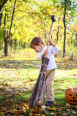 Little boy with haloween pumpkin and a broom in the woods — Stock Photo
