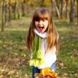 Little girl shouting in the autumn forest and holding leaves — Stock Photo
