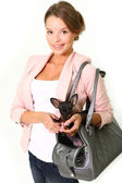 Smiling young woman with Chihuahua in a bag isolated on white ba — Stock Photo