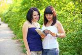 Zwei schöne brünette, die lektüre eines buches in einem sommer-park — Stockfoto