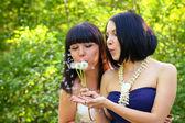 две женщины, дуя на одуванчик в парке — Стоковое фото