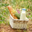 Picnic basket with daisies, bread and milk in the open air — Stock Photo