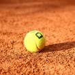Tennis ball is lying on the tennis field close-up — Stock Photo