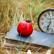 The book, clock, apple snail lay on dry grass — Stock Photo