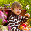 Little boy in autumn park with a suitcase and apples — Stock Photo
