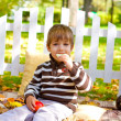 Little boy eating chocolate in the autumn forest — Stock Photo