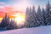 Winter landscape on a sunset. Bulgaria — Stock Photo