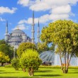 Stock Photo: Sultan ahmed mosque in istanbul turkey