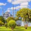 Sultan ahmed mosque in istanbul turkey — Stock Photo