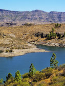 Presa de la Cueva de las Ninas, Gran Canaria, Canary Islands, Spain — Stock Photo