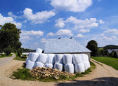 Polish Farmland — Stock Photo