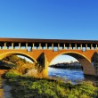 Ponte Coperto in Pavia, Lombardy, Italy - Foto Stock