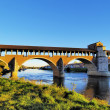 Ponte Coperto in Pavia, Lombardy, Italy - Zdjcie stockowe