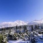 Winter, Tatra Mountains, Poland — Stock Photo #15853575